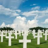 Memorial Day Pic