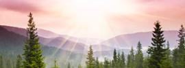 Sunrise-Noel-Nouvelet